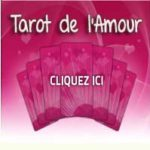 Tarot amour ou le tarot des animaux