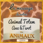 Tarot des animaux, nos animaux sont porteurs d'un amour inconditionnel.